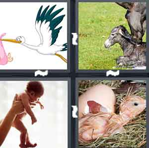 A cartoon drawing of a bird carrying a pink sack, A baby Donkey, A baby being held up, and A baby bird
