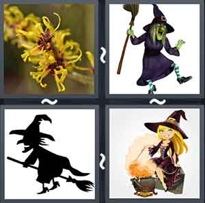 Witch plant, Cartoon of a witch, Witch on a broom, and Cartoon using magic wand