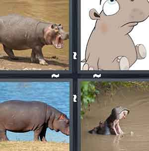 Hippo, Gray cartoon, Hippopotamus, and Mouth of an animal in the water