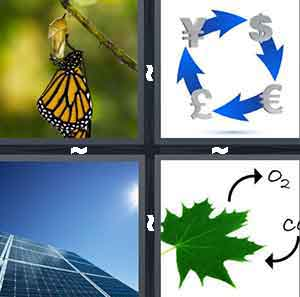 A butterfly on a twig, Blue arrows going in a circle with different types of currency in between the blue arrows, A solar pannel, and A green leaf with arrows above it and different chemical elements in between the arrows