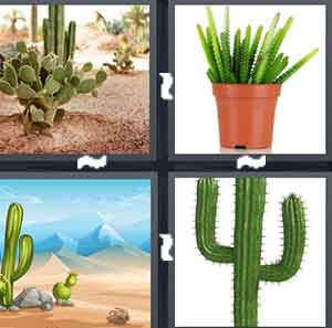A green plant with thorns on it, A plant inside a pot, A cartoon drawing of a dessert with a green plant, and A tall green plant with thorns