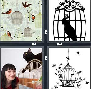Birds flying around cages, A captured bird, A cat sitting on top of a cage, and A