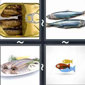Fish in a container, 2 fishes, Cooked fish in a plate, and cartoon fishes