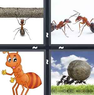 Insect lifting stick, Fighting ants, Cartoon ant, and Ants carrying rock