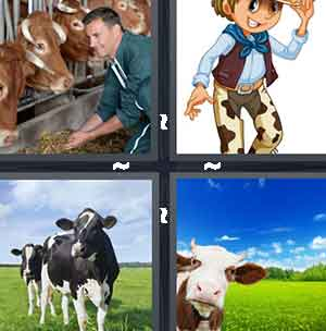 Farmer feeding animals, Cartoon cowboy, Black and white cows, and Cow