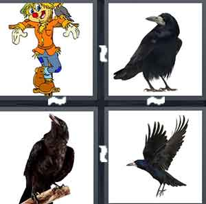 A cartoon Scarecrow, A blackbird, A blackbird on a stick, and A black bird flying