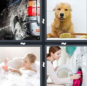 A car in water, A dog in a bath, A woman in the bath, and A woman putting clothes in to a machine