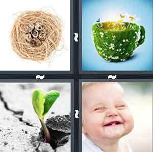 Brown bird's nest, Green stem in the concrete, Flowers growing out of a mug, and Baby smiling