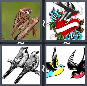 Sparrow sitting on a tree, Image of a sparrow and a heart, Two sparrows on a branch, and Colored pictures of birds